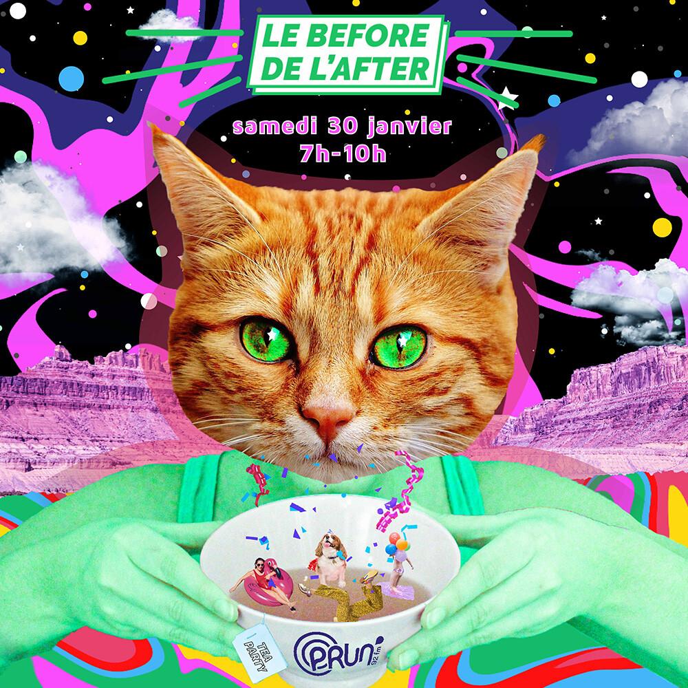 Le Before de l'After | Dou • Tina Tornade • Flamingo Didier • Larry