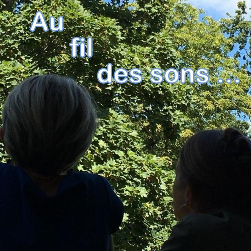 Au Fil des Sons...